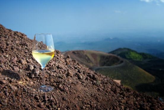 I Vini Bianchi Vulcanici, Sabato 17 Agosto ore 17:30/21:30